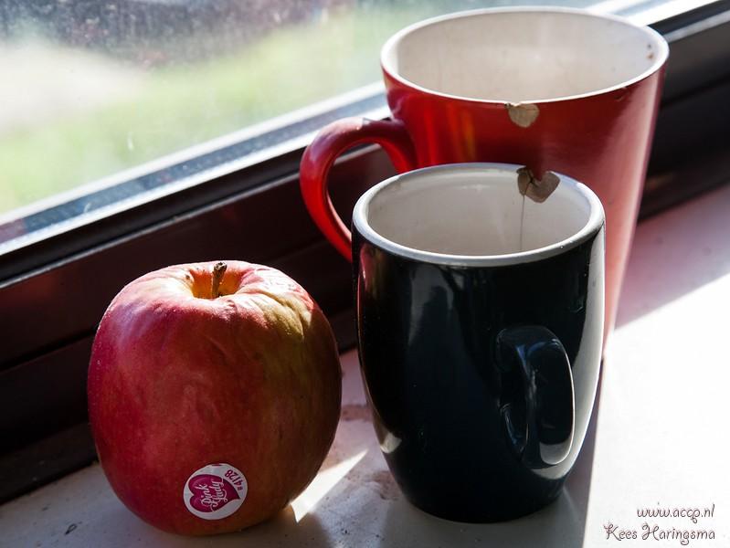 tu-delft studentenhuisvesting koffiepauze